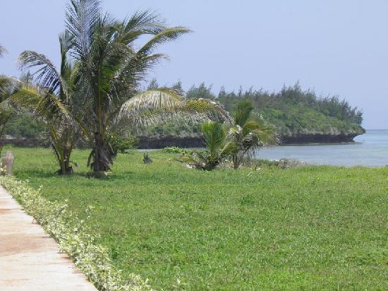 Dolphin Bay Resort Zanzibar: Surroundings