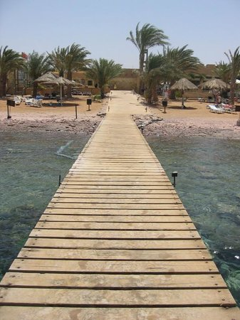 Royal Diving Centre: Aqaba: Royal Diving Center