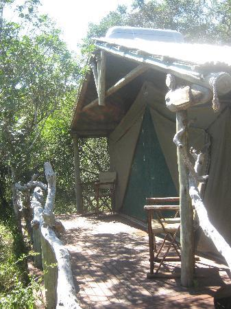 Sibuya Game Reserve & Tented Camp: Forest Camp accomodations