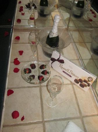 ويندام جاردن آن أربور: Chocolates & drinks