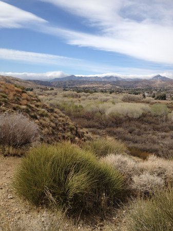 Big Morongo Canyon Preserve