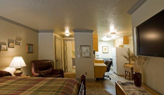 Bond Hotel & Extended Stay: Studio Flats