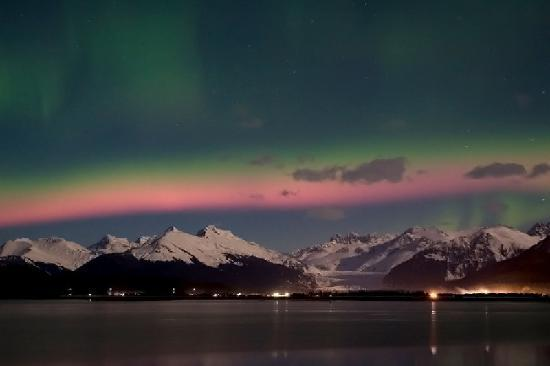 Stories And Legends And Tours: Whale Watching Under The Northern Lights; In  Juneau,