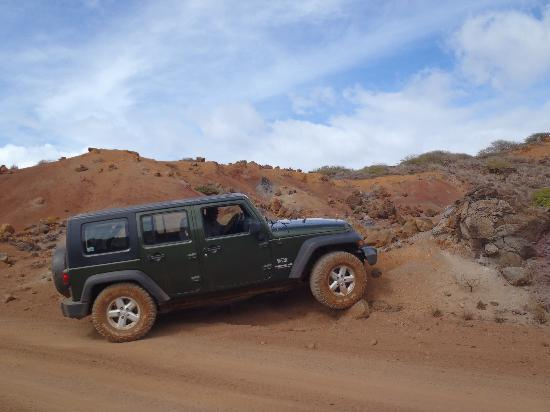 Our Jeep rental - at Garden of the Gods - Picture of Adventure Lanai