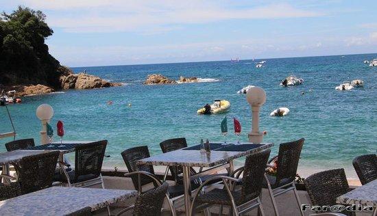 Sagone, فرنسا: Colazione sul mare