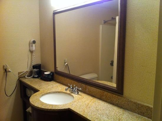 Sturbridge Host Hotel & Conference Center: big sink in bathroom
