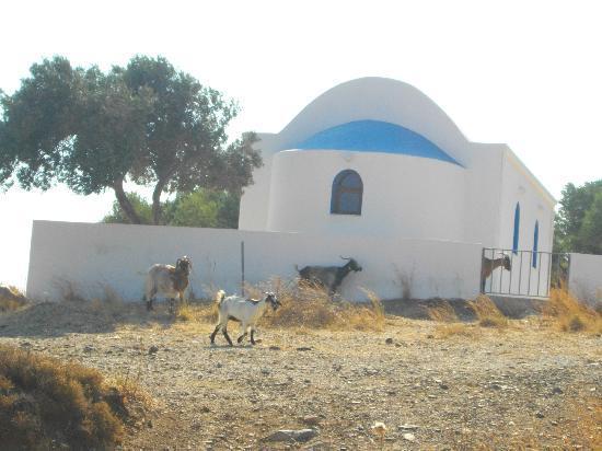 Кардамена, Греция: kardamena, chiesa in campagna fuori dal villaggio