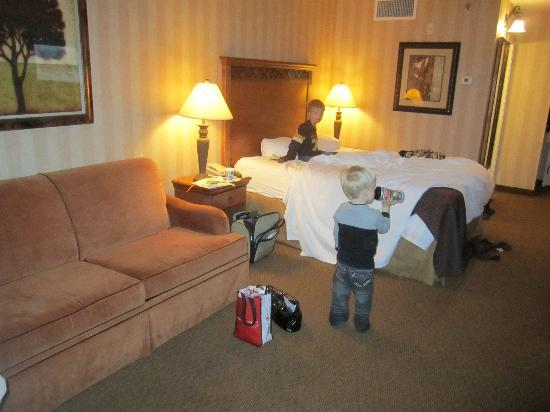 Holiday Inn & Suites: Main Room