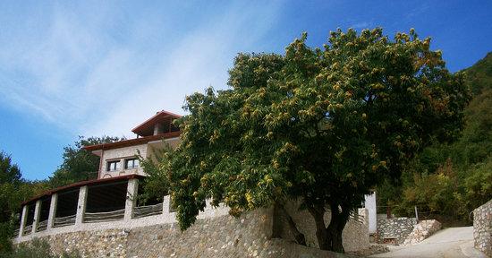 Αριδαία, Ελλάδα: getlstd_property_photo