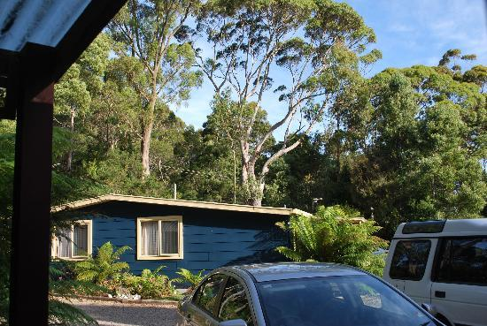 Discovery Holiday Parks Strahan: Outside Cabin