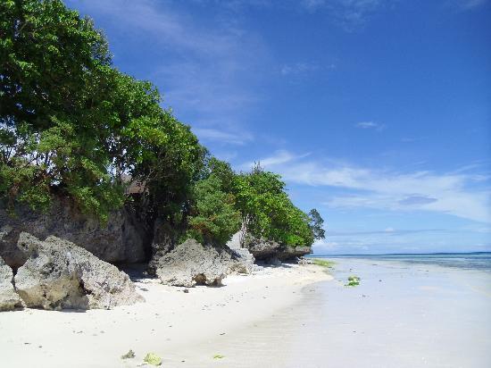 Anda White Beach Resort: Au fil de votre ballade sur la plage