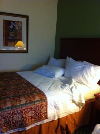 Fairfield Inn Lumberton: double bed