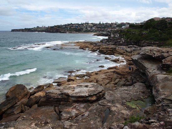 Coogee/Lurline Bay Walk