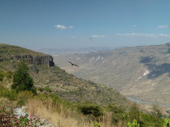 Debre Libanos, Äthiopien: Blick von der Lodge ins Tal