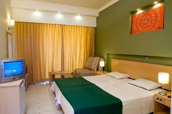 Delfinia Resort Hotel: Standard Double