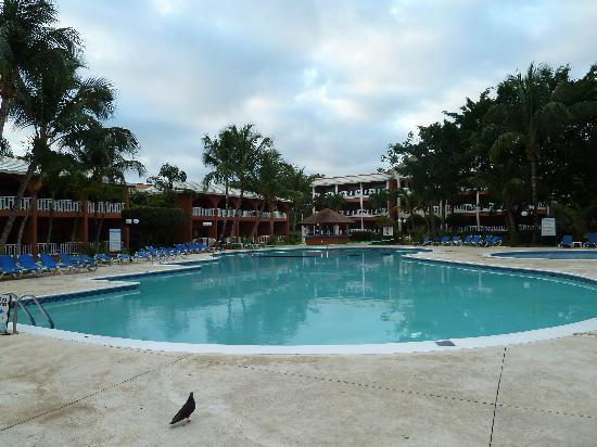 Piscine de l 39 hotel picture of bellevue dominican bay for Piscine bellevue toulouse