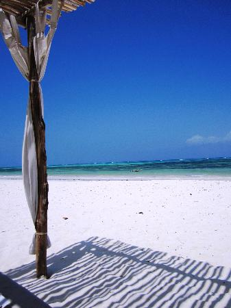 Next Paradise Boutique Resort : From our beach beds