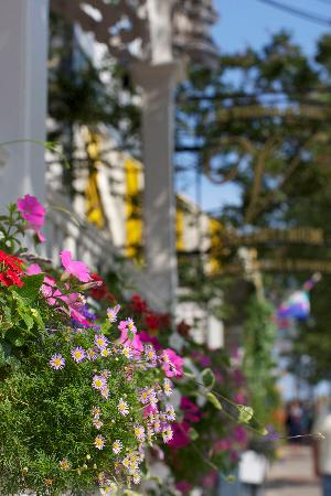 The Virginia Hotel: Our famous flower boxes