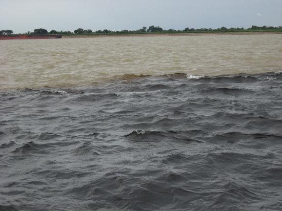 Orinoco River: Orinoco & Canoni