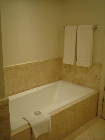 The Ritz-Carlton, Washington, DC: Bathtub