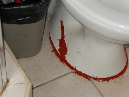 أوشنز ساليبيا نيتشر ريزورت: glued toilet