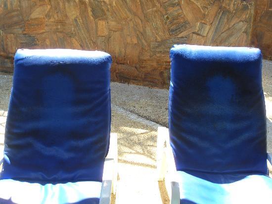 أوشنز ساليبيا نيتشر ريزورت: pool chairs