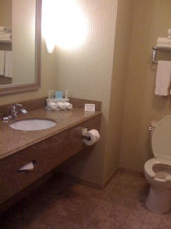 Holiday Inn Express Hotel & Suites Dubois: Nice Bathroom