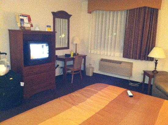 Best Western Des Plaines Inn : Facing TV