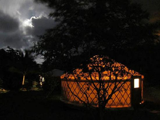 Mermaid's Secret - Riverside Retreat: The yurt at night, lit from inside