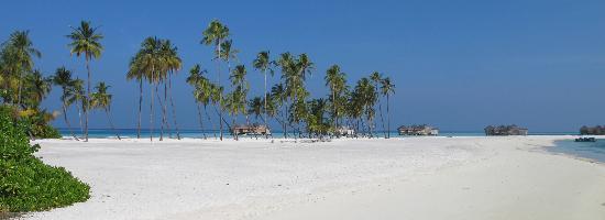 Gili Lankanfushi Maldives: Palm Beach