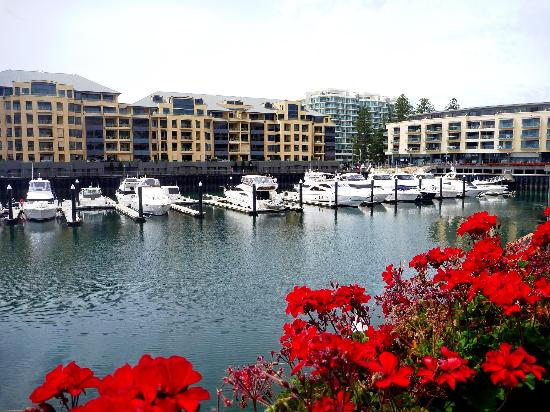 The Wharf : A stunning view over Glenelg Marina