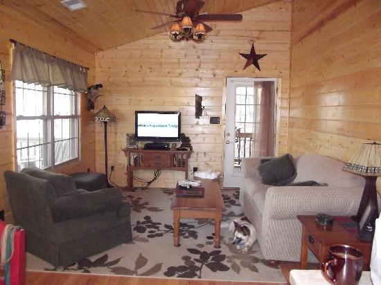Cedar Rock Cabins: living room