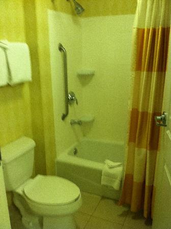 Residence Inn Harrisburg Carlisle : bathroom