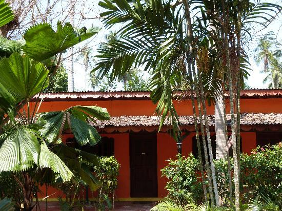 Pondok Keladi Guest House : view to room
