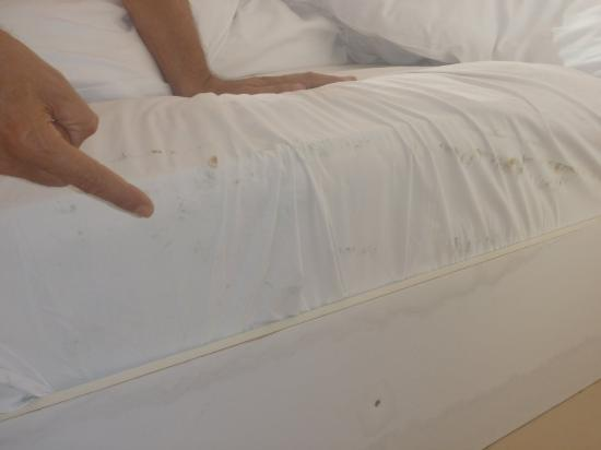 Beach Front Hotel Chaam : Unclean bedding