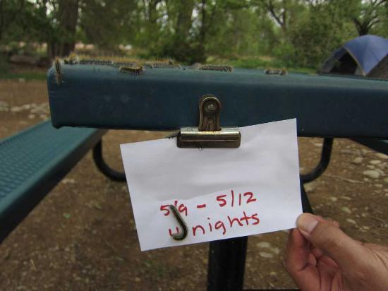 """Up the Creek Campground: Other site """"visitors"""""""