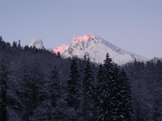 Alm- & Wellnesshotel Alpenhof: Jenner 2 - Mountain view