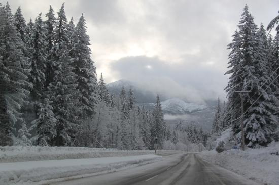 snow covered road near whistler picture of sea to sky. Black Bedroom Furniture Sets. Home Design Ideas