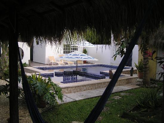 Villa Escondida Cozumel Bed and Breakfast: Pool und garten