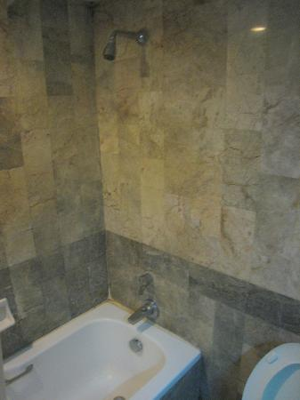 La Paloma Hotel : Shower and small bath