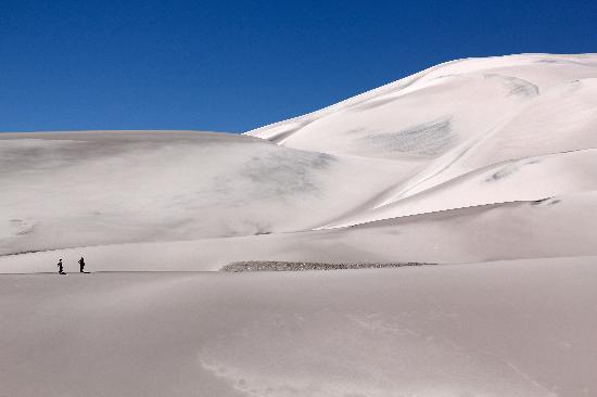 Hosteria De Altura El Penon: les dunes à proximité de Campo Piedra Pomez