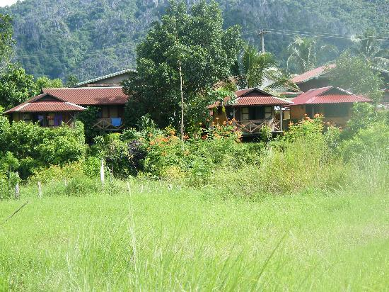 Maylyn Guest House: wet season is greener!!