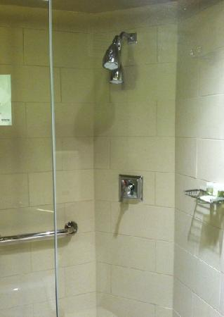 The Westin Huntsville: large walk-in shower with double heads