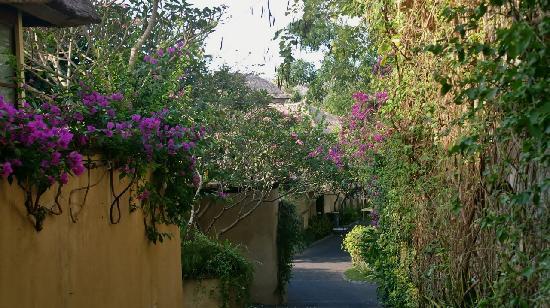 Pat-Mase, Villas at Jimbaran : Allée entre les villas