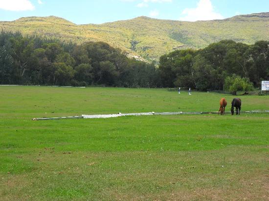 Franshoek Farm and Polo School: Polo field