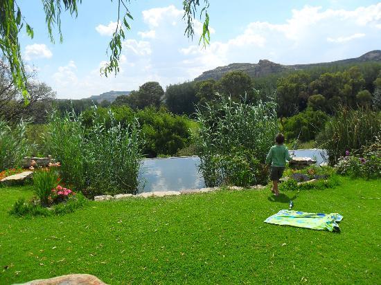 Franshoek Farm and Polo School: Wet Love