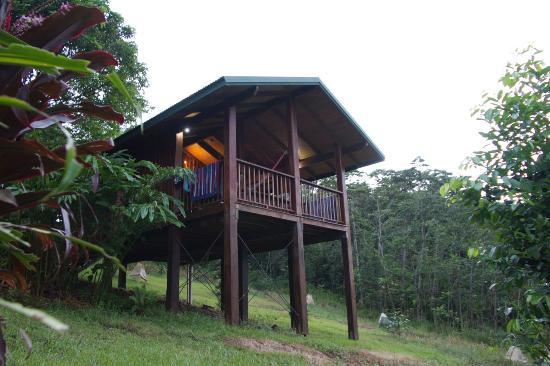 Coral Sea Views: The huts are nice and new