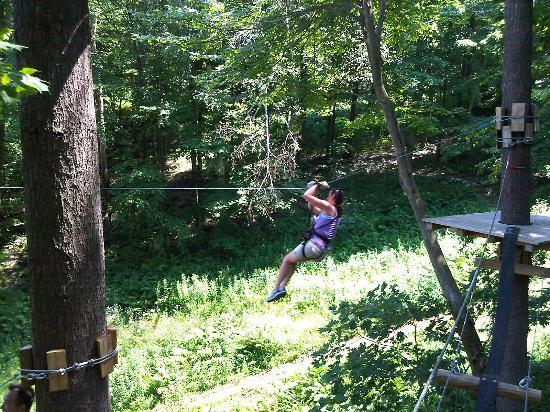 Catamount Aerial Adventure Park : zip