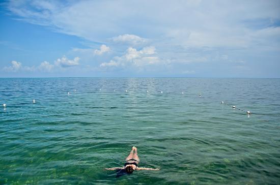 Xanadu Island Resort : Incredible water