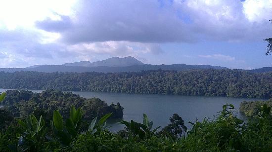 Athirappilly Waterfalls: peringal kuttu reservoir